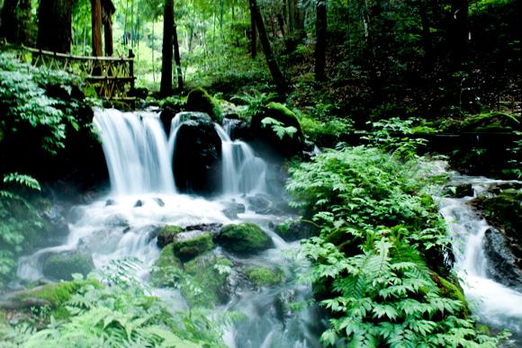 瓜割の滝5