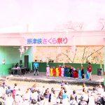 高槻摂津峡公園『さくら祭り』に行ってきた話2017