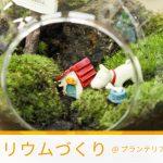【オープンたかつき】苔のテラリウムづくり当日レポート!