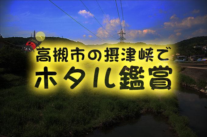 高槻市の摂津峡で蛍(ホタル)鑑賞【下の口駐車場・塚脇バス停】